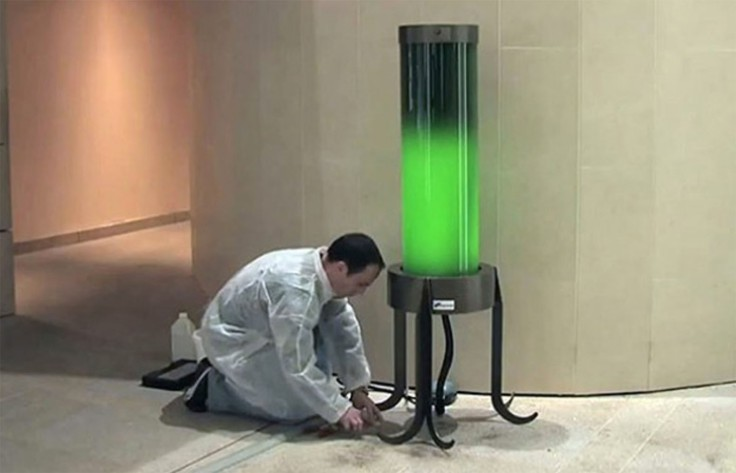 Living-Microalgae-Lamp-Absorbs-CO2-from-the-Air.jpg